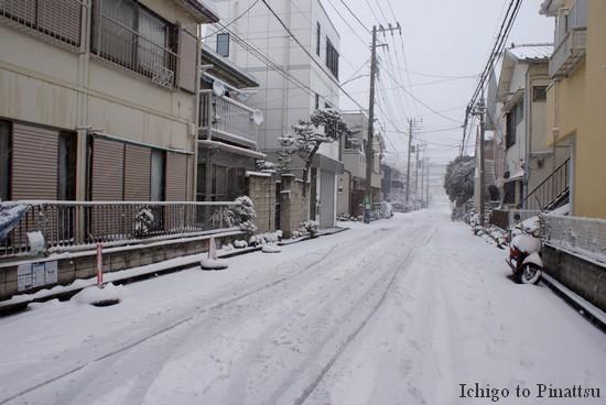 Yokohama sous la neige