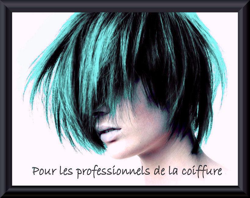Pour les professionnels de la coiffure