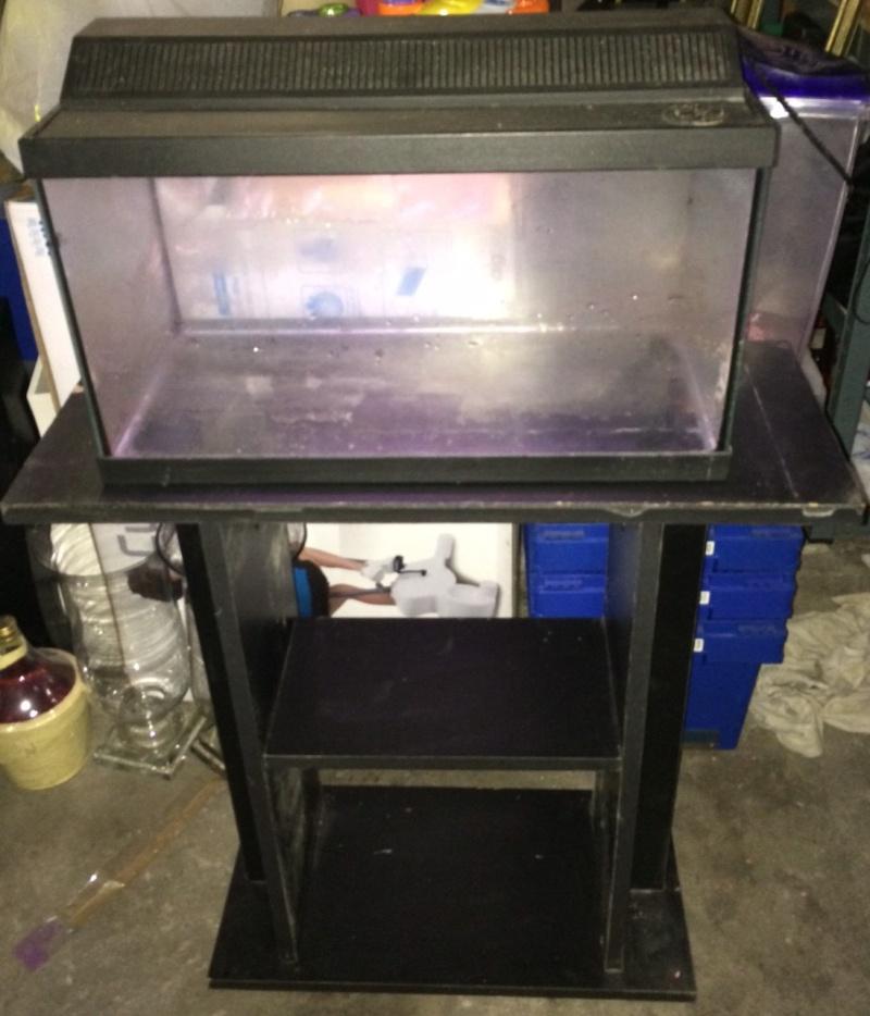 Vend tout aquarium et mat riel aquariophile for Vend aquarium