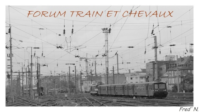 Forum Train Et Chevaux