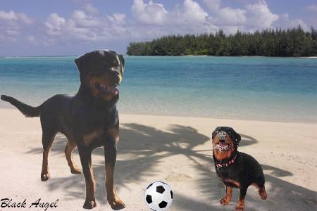 Papa et moi à la plage