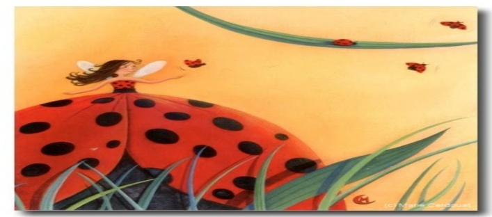 les coccinelles