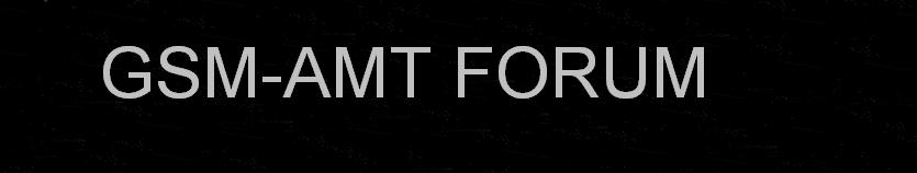 GSM AMT
