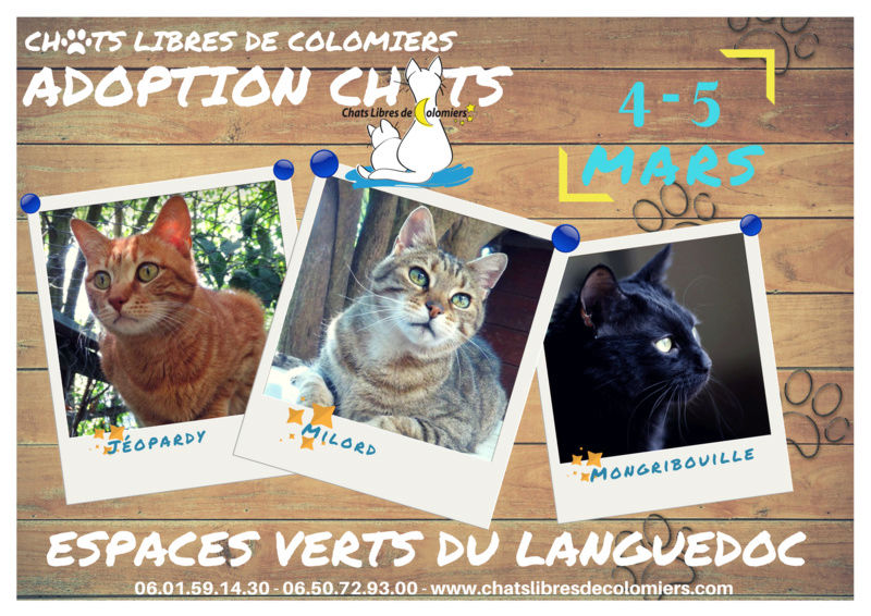 Week end adoptions aux espaces verts du languedoc le 4 et for Espaces verts du languedoc