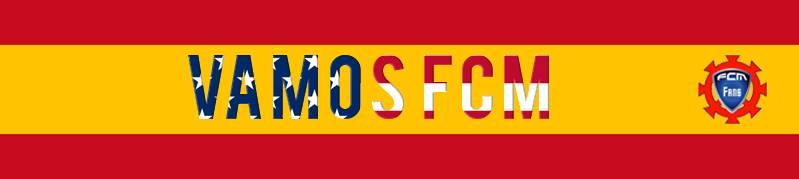 FC Mulhouse Fans