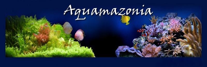Aquamazonia.com