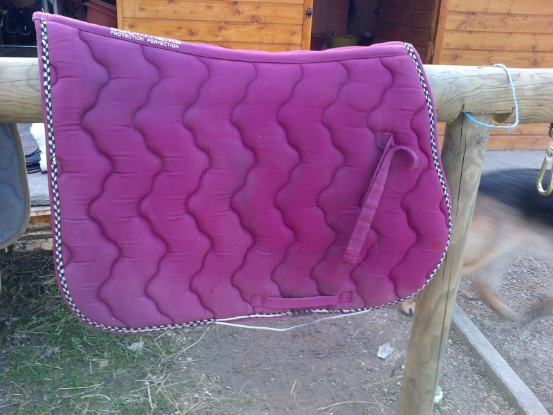 A Vendre Selles Tapis Filets