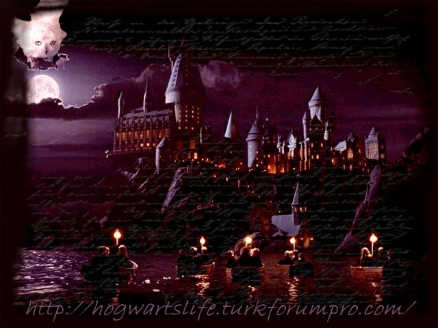 <font color=brown>Hogwarts Life | Role Play Game</color>