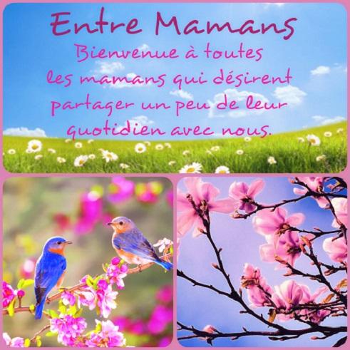 Entre Mamans