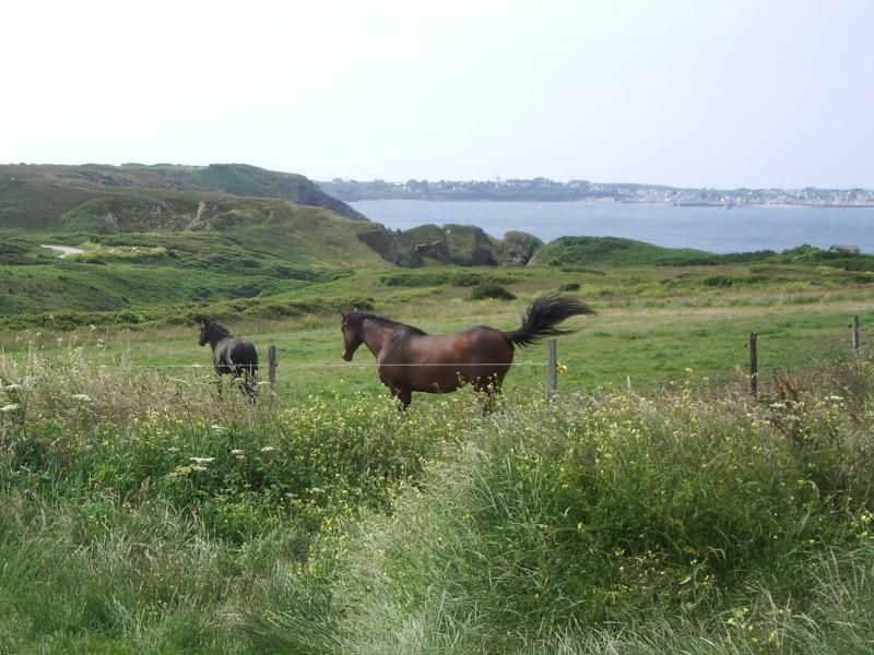 Blog de polchar59 : paysage