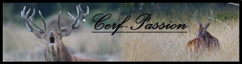 cerf-passion