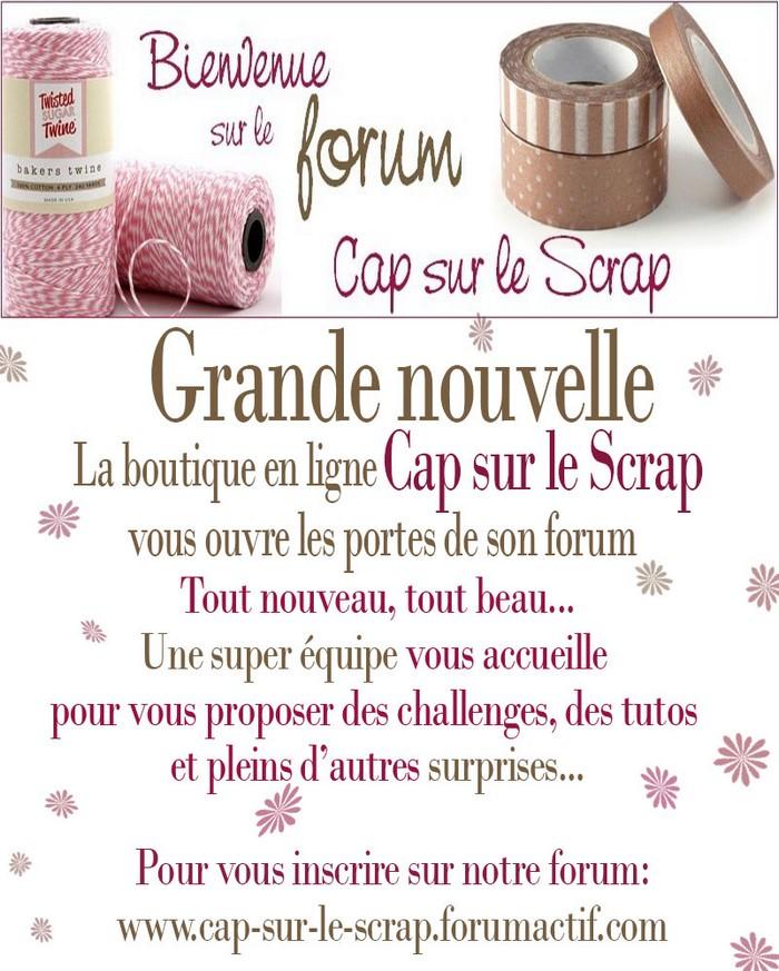 http://cap-sur-le-scrap.forumactif.com/forum