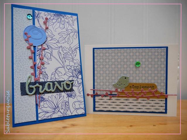 Passion Cartes Créatives#480 !