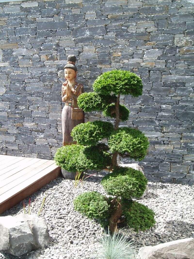 Que faire de ce coin ci des id es - Plante pour jardin japonais ...