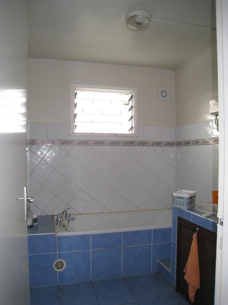 Melba974 salle de bain rdc peindre quels murs page 2 for Peindre salle de bain placo