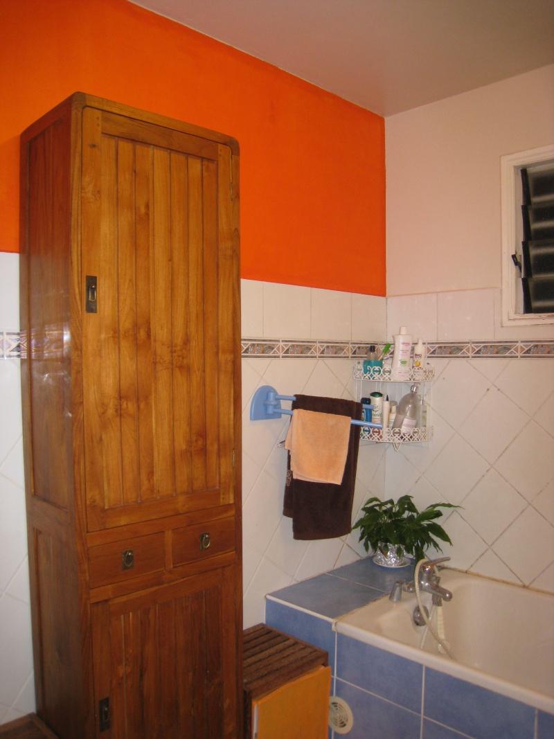 melba974 salle de bain rdc peindre quels murs page 2. Black Bedroom Furniture Sets. Home Design Ideas