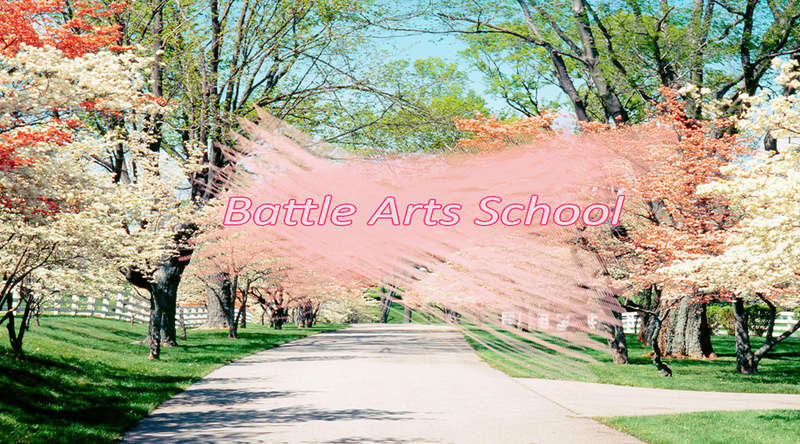 Battle ARTS School