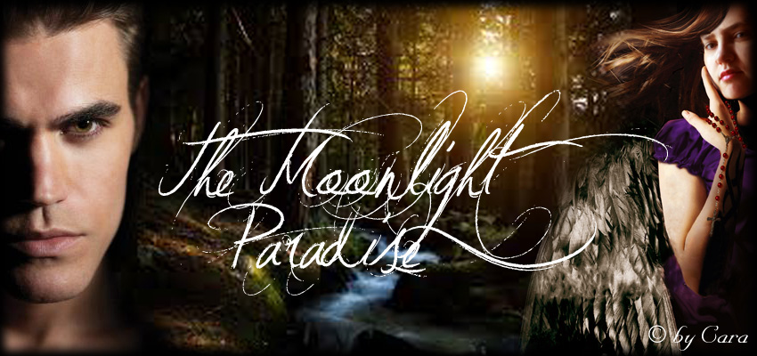The Moonlight Paradise