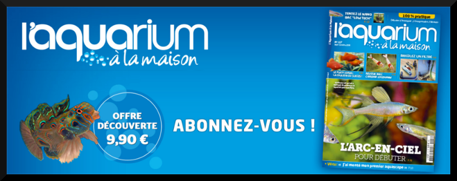 photo logo aquarium a la maison