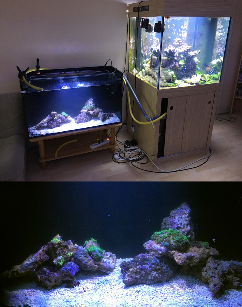 Bac fish only 1500 litres version 1 page 2 for Bac a poisson 2000l