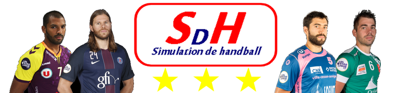 Simulation de Handball