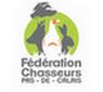 logo-f20.png