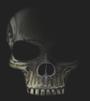 http://i58.servimg.com/u/f58/16/23/72/63/skulls10.png