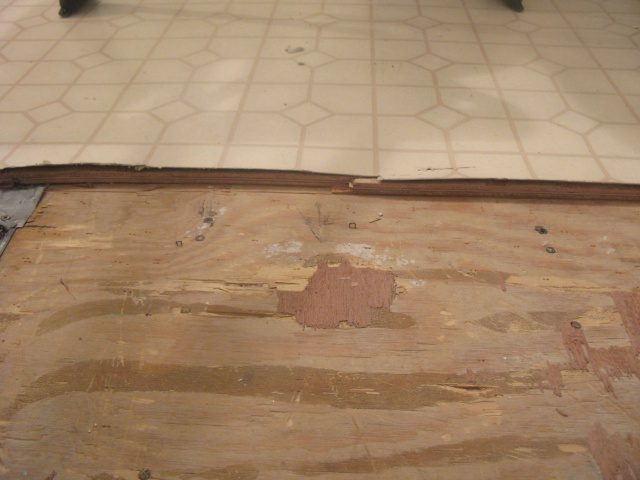 A Circular Saw Set At The Proper Depth And A Heavy Duty Floor Scraper Had  All Of The Old Floor Out, Down To Original Subfloor. Then New Luan Sheeting  Laid ...
