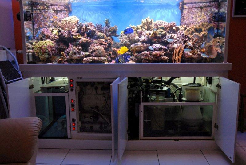 Forum r cifal finist rien afficher le sujet pr vente for Bac a poisson 1000l