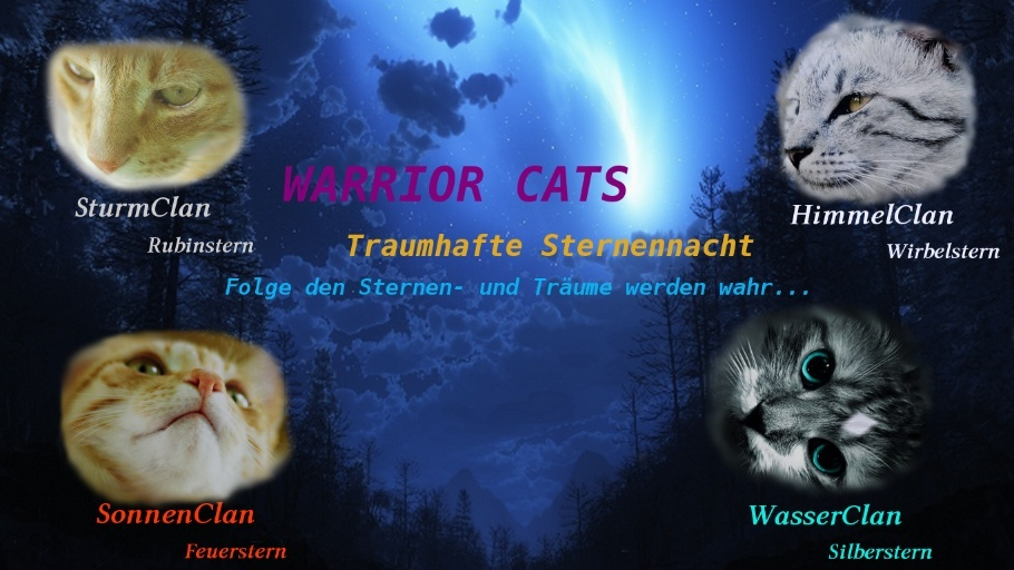 Warrior Cats - Traumhafte Sternennacht