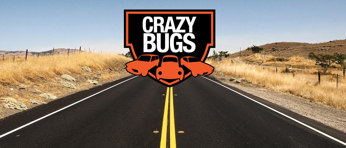 :. Crazy Bugs .: