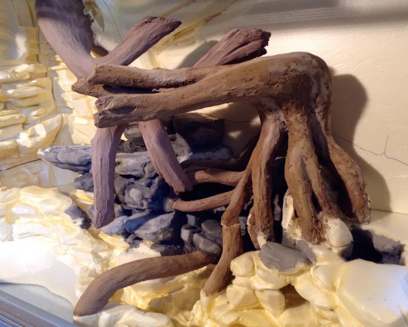 paludarium pour dendrobates mon sous bois tropical terrariums mat riel technique page 11. Black Bedroom Furniture Sets. Home Design Ideas