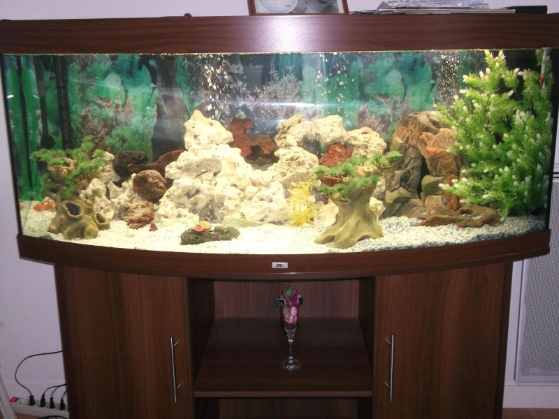 Aquarium Eau Douce 450l