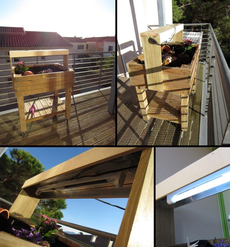 terrarium dans carr potager juv nile. Black Bedroom Furniture Sets. Home Design Ideas