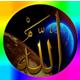 الواحه الإسلاميه
