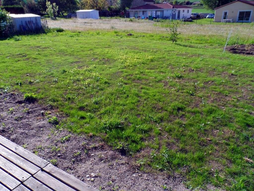 ma pelouse ne pousse toujours pas 25 messages. Black Bedroom Furniture Sets. Home Design Ideas