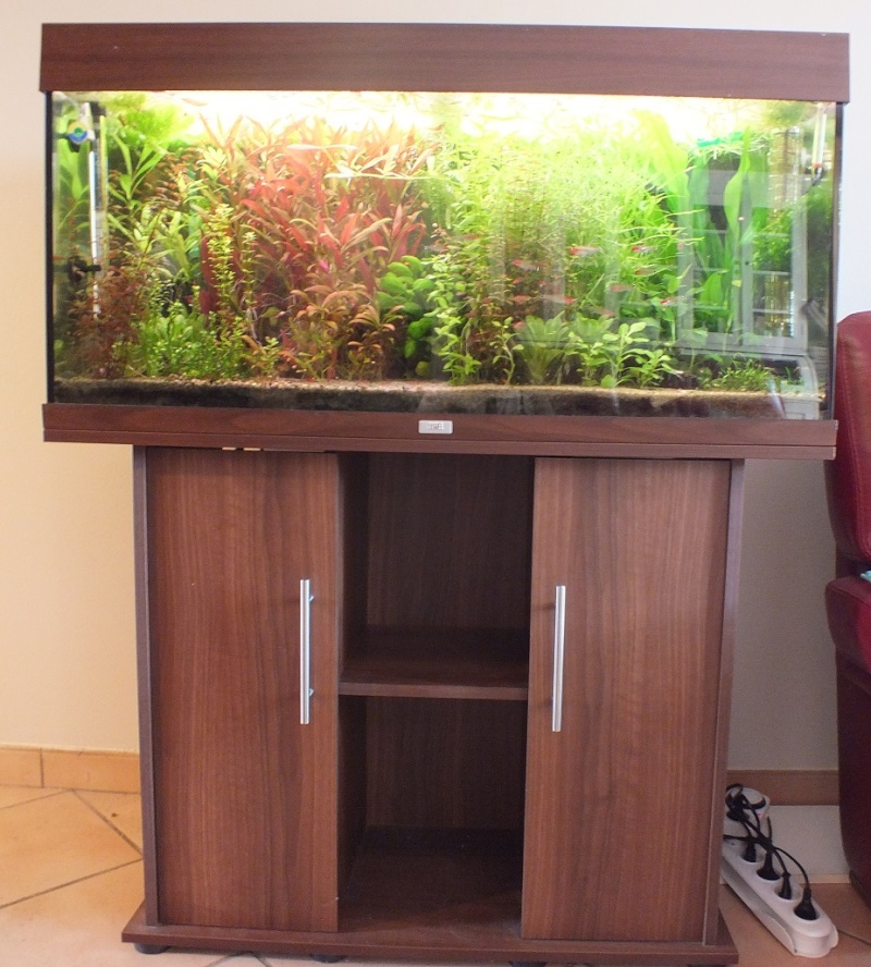 forum aquariophilie aqua lorca aquarium juwel rio 180 meuble quipement complet. Black Bedroom Furniture Sets. Home Design Ideas
