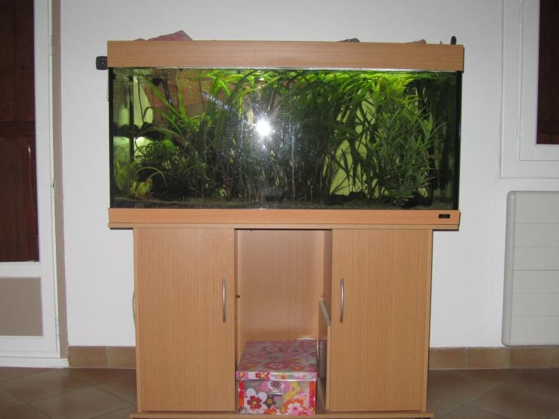 Vente aquarium complet plante racine for Vente aquarium complet