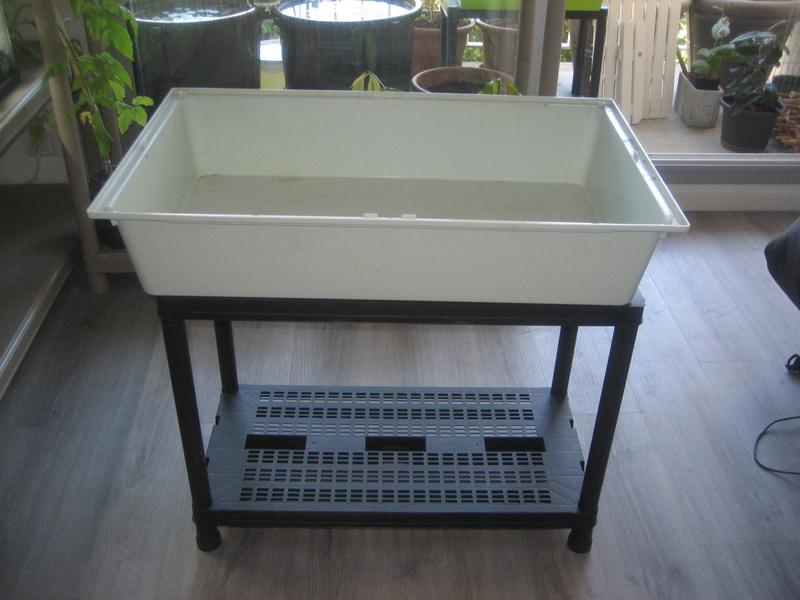 pr sentoir pour orchid es et autres. Black Bedroom Furniture Sets. Home Design Ideas