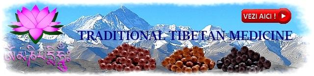 https://i58.servimg.com/u/f58/19/17/38/41/tibeta10.jpg
