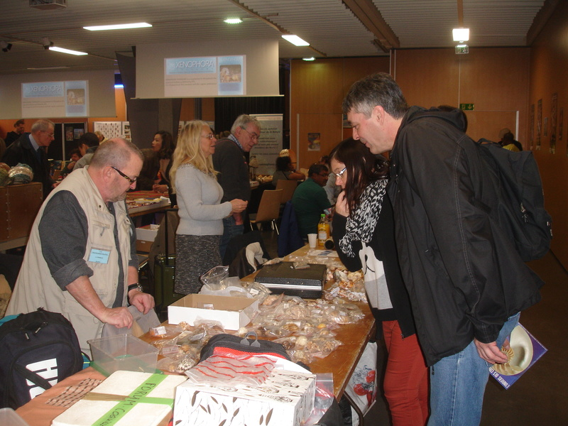 Rencontres internationales du coquillage 2018
