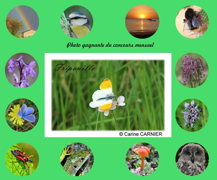 Toute la nature en photos