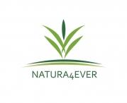 Améliorer vos revenus avec l'opportunité Natura4ever