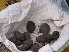 truffl11.jpg