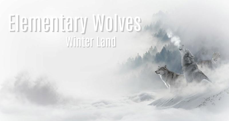 Elementary Wolves