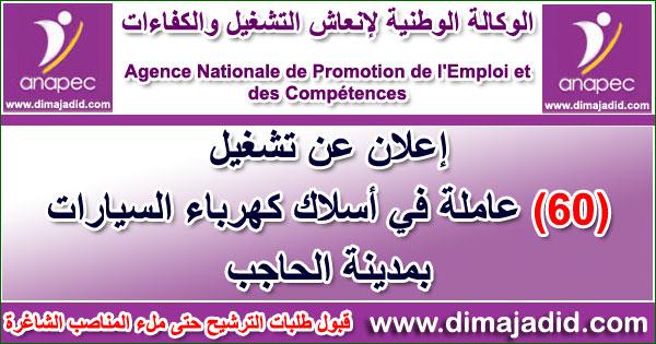 الوكالة الوطنية لإنعاش التشغيل والكفاءات: توظيف 60 عاملة في أسلاك كهرباء السيارات بمدينة الحاجب