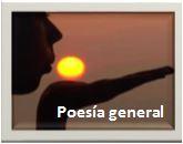 Poemas generales