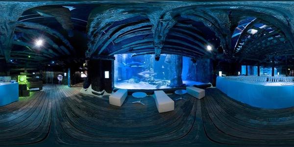 London Aquarium Contact Number Best Accent Chairs And Aquarium
