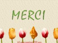 merci-10.jpg