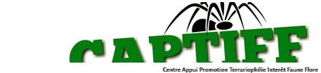 Captiff Forum